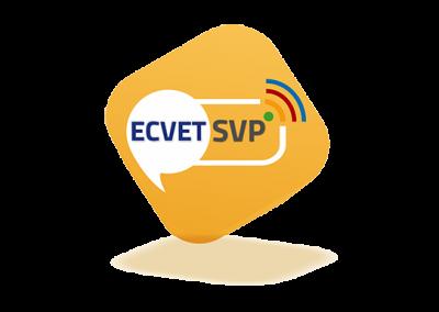 ECVET Skills Platforms